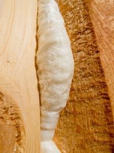 Spray Foam Insulation Stamford   Fairfield County